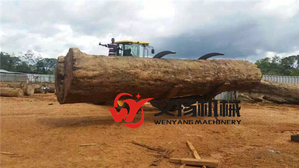 Wenyang machinery WY978J 12Ton wheel loader with log grapple suitable for big diameter wood log